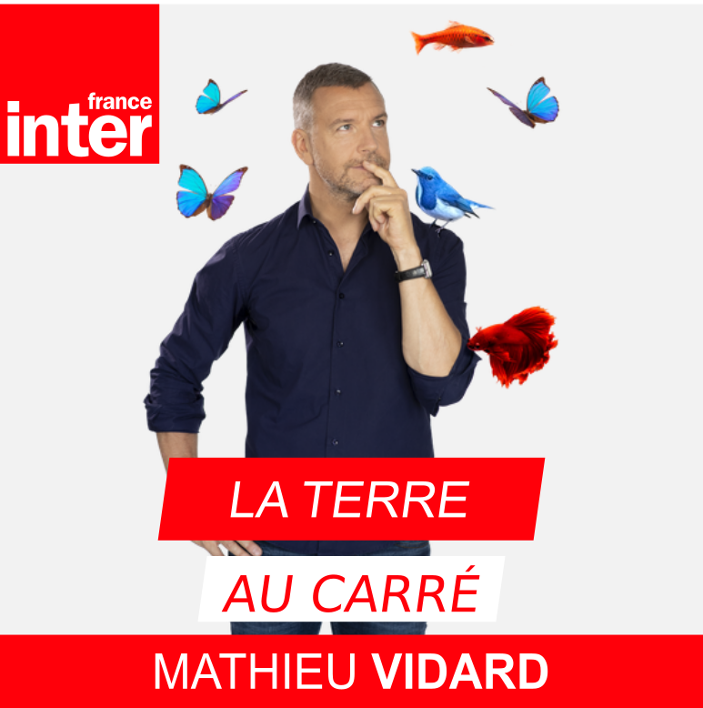 http://www.svt-monde.org/IMG/png/La_Terre_au_carre_nw.png